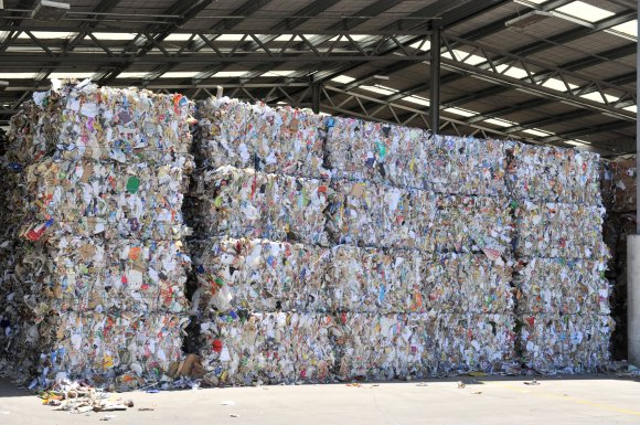 Bales of recycled paper and cardboard awaiting export at the Green Island recycling plant - Friday 090115
