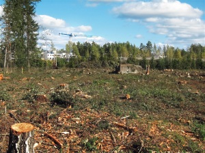 deforested-574185