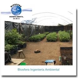 biosfera_foto