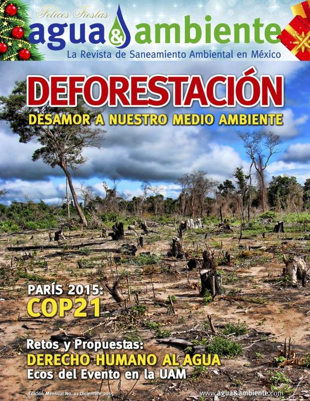 portada11-dic2015