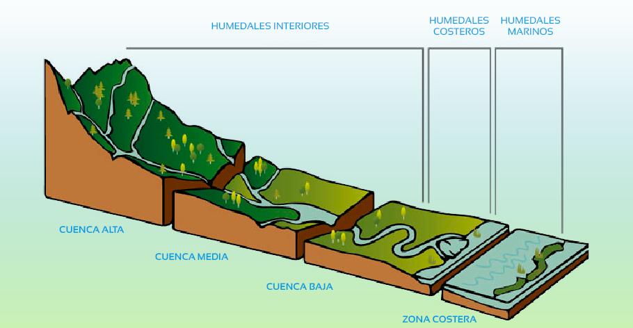 34-cuencas-hidrologicas-humedales-interiores-costeros